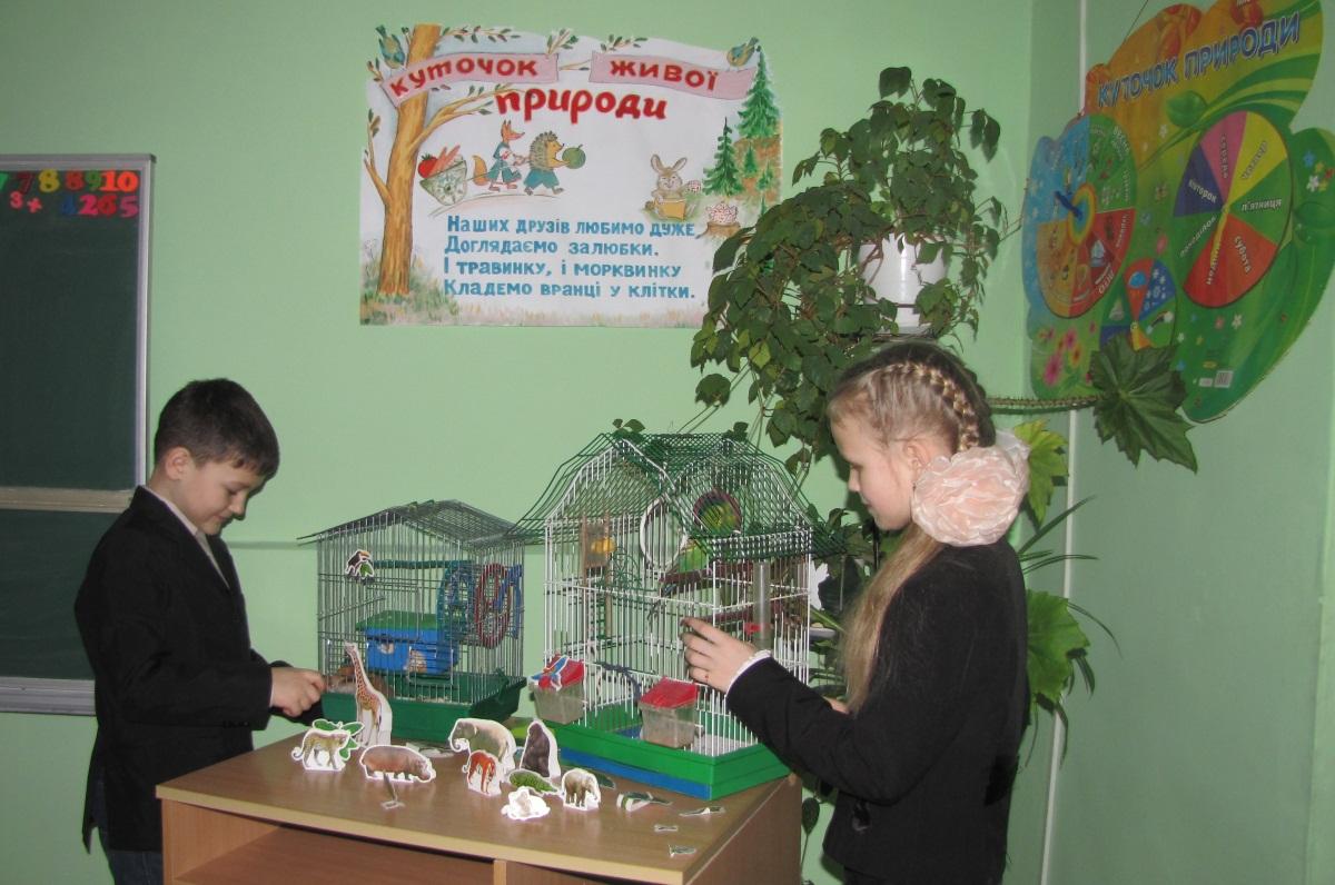 1 клас Пологи Живий куточок Фото першого класу