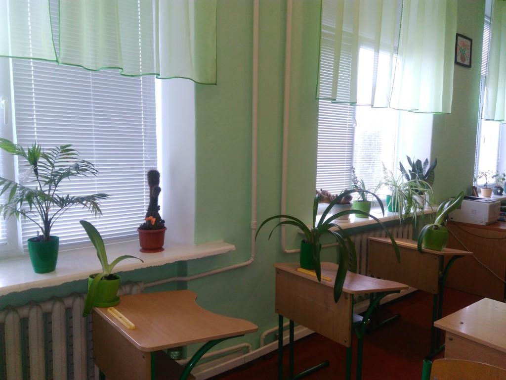IMG 20161123 133840 1024x768 Конкурс огляд на найкраще озеленення класних кімнат