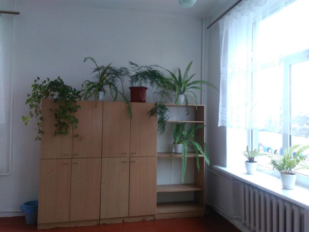 IMG 20161123 134853 1024x768 Конкурс огляд на найкраще озеленення класних кімнат