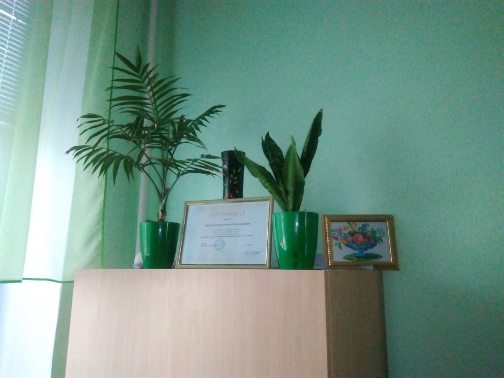 IMG 20170925 151631 1024x768 Щорічний конкурс озеленення школи