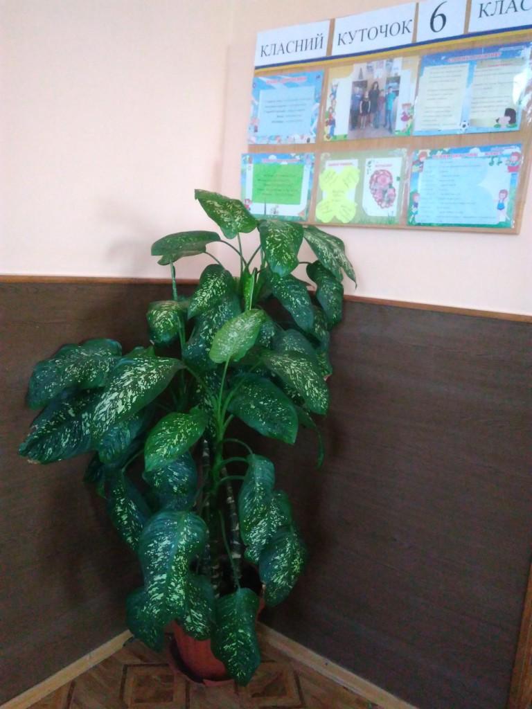 IMG 20170925 152030 768x1024 Щорічний конкурс озеленення школи