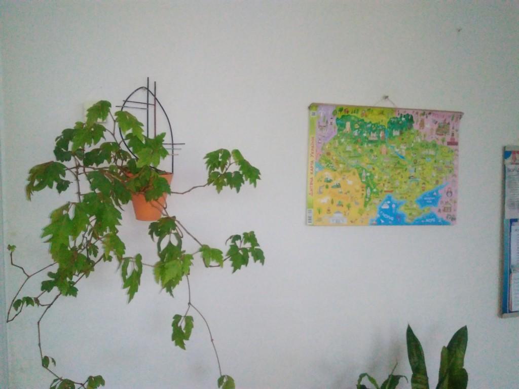 IMG 20170925 152844 1024x768 Щорічний конкурс озеленення школи