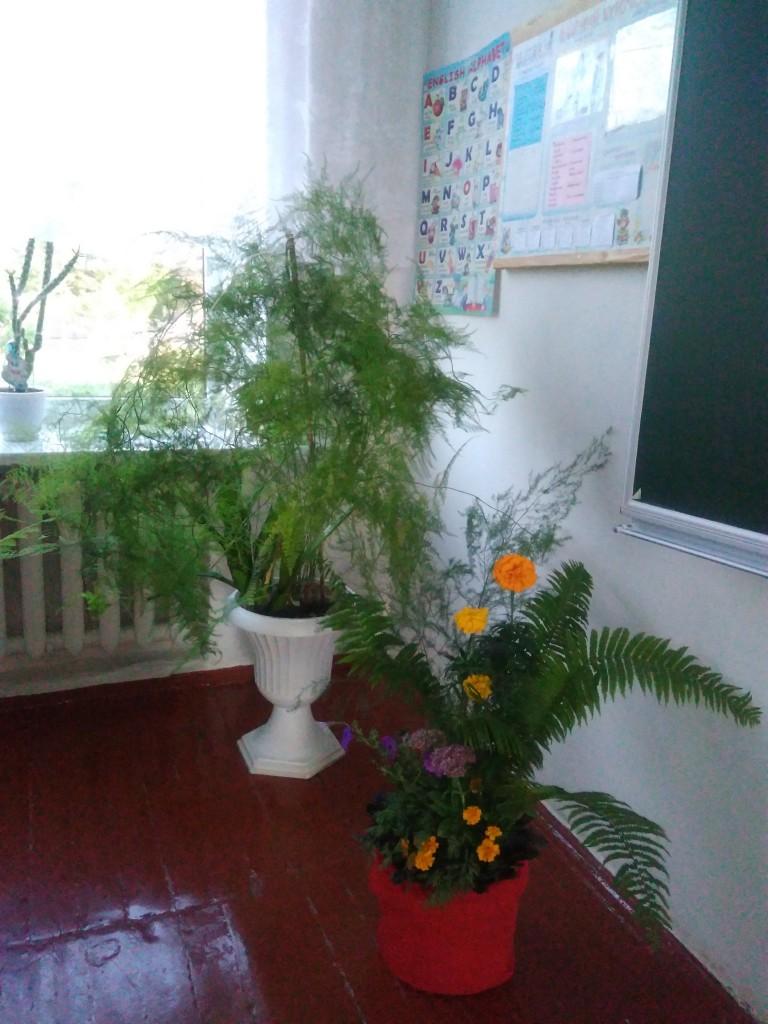 IMG 20170925 152944 768x1024 Щорічний конкурс озеленення школи