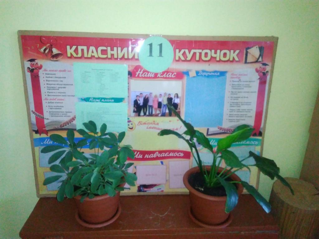 IMG 20170925 153117 1024x768 Щорічний конкурс озеленення школи
