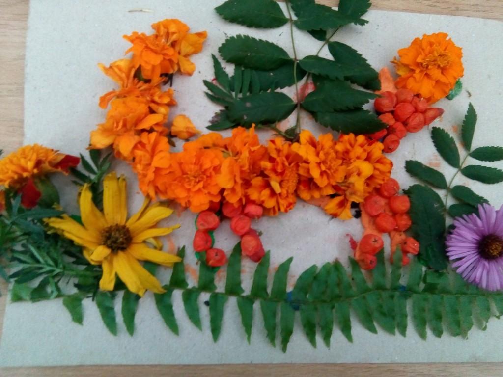 лісовій галявині 4 клас e1538194606523 1024x768 У світі квіткових тварин
