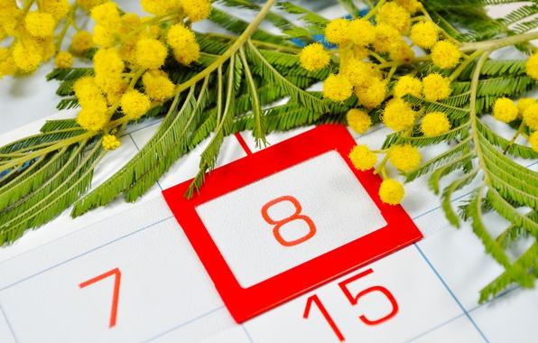 8 marta zhenskii den kalendar chisla krasnye data mimoza tsv Заплановані заходи на 04.03 07.03.2019